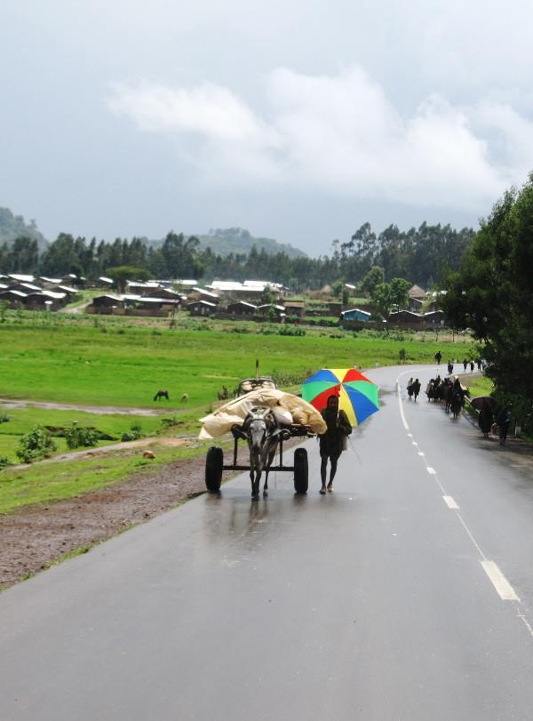 The picturesque, wet and Ethiopian highlands on the way to the city of Bahir Dar.