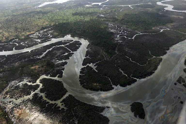 Creeks and vegetations devastated as a result of spills from oil thieves and Shell operational failures in Niger Delta on March 22 2013. (Pic: AFP)