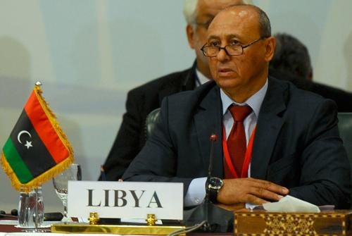 Mohamed-Abdel-Aziz