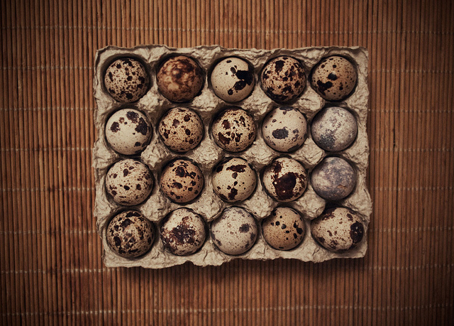 The nutritional value of quail eggs is said to be about three times greater than chicken eggs. (Pic: Flickr / ilya)
