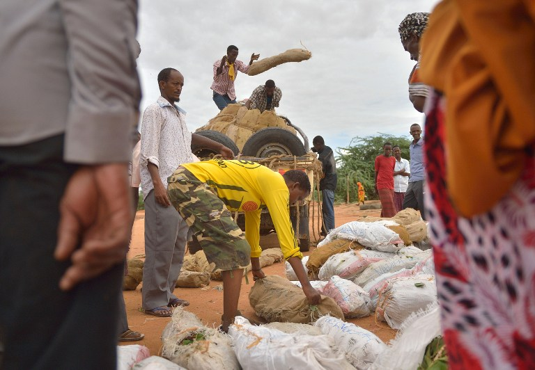 Traders deliver khat to the market at IFO main camp of the Dadaab refugee camp. (Pic: AFP)