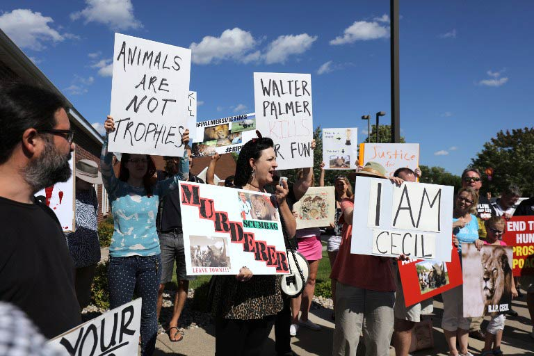 Protesters call attention to the alleged poaching of Cecil the lion in the parking lot of Dr Walter Palmer's River Bluff Dental Clinic in Bloomington, Minnesota. (Pic: AFP)