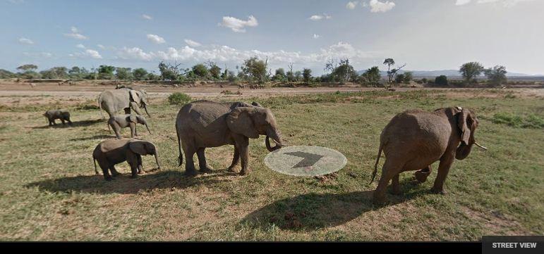 (Screenshot: Google Street View)