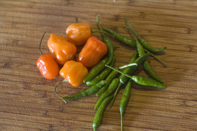 Flavours galore: chilies.